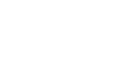 Panorama search
